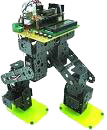 Our Cytron Walking Biped Robot