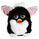 Our Furby Robot