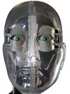 Robotics Squared Animatronic Head